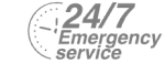24/7 Emergency Service Pest Control in London. Call Now! 020 3519 0469